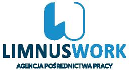 praca - Pracownik serwisu opon